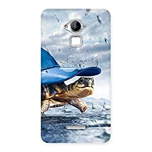Cute Wow Turtle Multicolor Back Case Cover for Coolpad Note 3