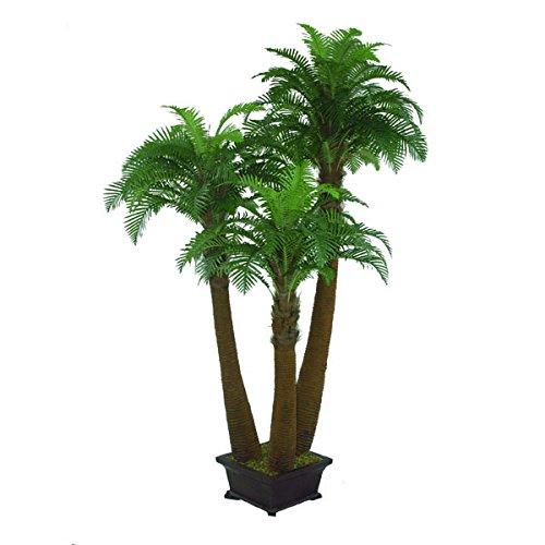 Palma Nana Ornamentale In Vaso Decorativo, 3 Tronchi, 240 Cm   Palma Finta  / Palmizio   Artplants