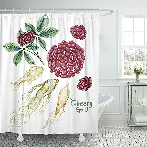LINGJIE Duschvorhang Red Chinese Watercolor Ginseng Root and Berries Green Herb Shower Curtain Shower Curtain with Plastic Hooks -