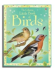 Little Book of Birds (Usborne Little Books)