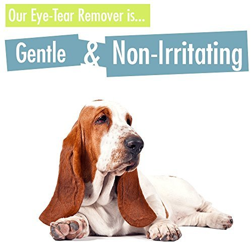 Best Tear Stain Remover For White Dogs Uk