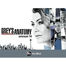 Grey's Anatomy - Season 14 [OV/OmU]