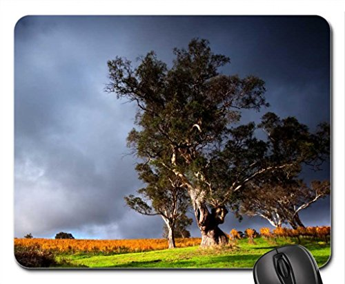 vinedo-under-stormy-skyies-mouse-pad-mousepad-fields-mouse-pad