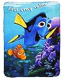 alles-meine.de GmbH Kuscheldecke / Fleecedecke -  Disney - Findet Nemo - Fisch Dory  - 100 cm * 140 cm - Decke aus Fleece - für Mädchen & Jungen - Schmusedecke - Schleife - Jun..