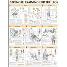 Legs Poster (Strength Training Anatomy)