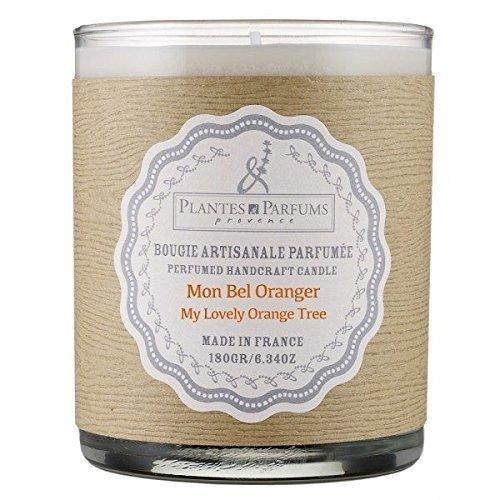 Plantes et Parfums – Bougie parfumée – My Lovely Orange Tree