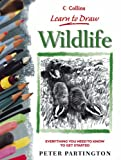 Collins Learn to Draw – Wildlife