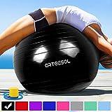 arteesol Balle Fitness 45cm/55cm/65 cm/75 cm Anti-éclatement Anti-dérapant Ballon de Yoga Swiss Ball Accouchement Balle Rapide Pompe Fitness Gym Pilates Core Training Thérapie Physique (Noir, 75cm)