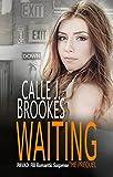 Waiting: A PAVAD: FBI Prequel (PAVAD: FBI Romantic Suspense Book 1)