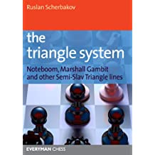 The Triangle System (English Edition)