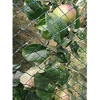 Nutley's Kitchen Gardens FLE07BN5 Filet anti-oiseaux tissé Vert 5 x 6m