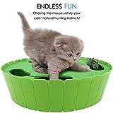 Pawaboo Haustier Spielzeug - Verstecken und Suchen Elektronische Maus Jagd interaktive Katze Spielzeug, Hell Grün Test