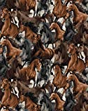 Oasis Stoffe Pferde Stoff - Pferde hellgrau - OAS04 - 0,5