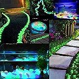 Lot de 200 Pierres Lumineuses pour éclairage de Nuit, Galets Lumineux, Vert Bleu 2 à 3 cm pour jardin, chemins, cour, Pot de fleurs, aquarium, piscine