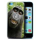Stuff4 Coque de Coque pour Apple iPhone 5C / Selfie Babouin Design/Animal Drôle Meme...