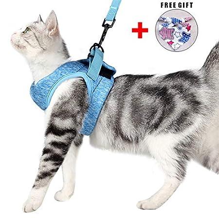 Katzengeschirr und Leine Set für Spaziergang 360° Wrap-Around kleine Katze und Hunde Geschirr Pufferwirkung und…