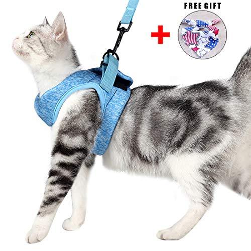 Katzengeschirr Set mit Leine für Autofahren & Spaziergang, zum Gehen 360 °Katzenleine mit Geschirr für Katzen Kitten Katzengarnitur Kleine Katze Cat Harness Kaninchen mit kationischem Stoff (S, Blau)