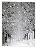 Clever Creations - Poster con luci - Tela Raffigurante Un Sentiero innevato Illuminato da luci LED - Ideale per Decorare casa, Salotto, Ufficio o Classe - 40 x 29,8 cm