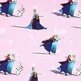 Fabulous Fabrics Jersey Disney ELSA 2 pink — Meterware ab
