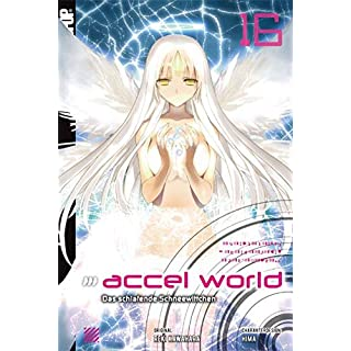 Accel World - Novel 16