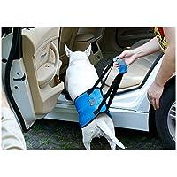Cinturón auxiliar para perros, varios tamaños de azul Cinturón auxiliar para caminar Edad avanzada Perro deshabilitado Perro Cinturón de protección para las piernas traseras Correa de protección para