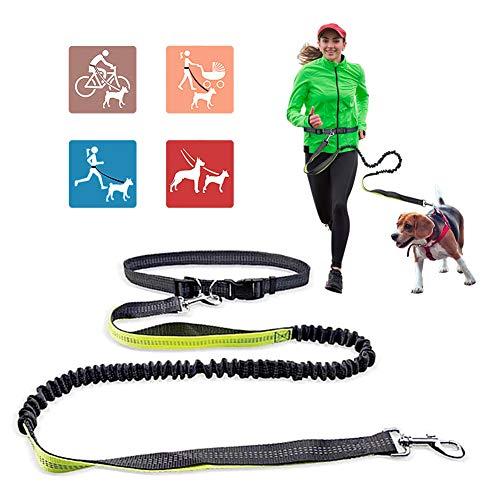 Jogging Hundeleine, Hands Free Hundeleine mit verstellbarem Hüftgurt, Jogging Handfrei Lange Nylon Hundeleine zum Joggen, Laufen Wandern, freie Kontrolle für einen / zwei mittelgroße bis große Hunde -