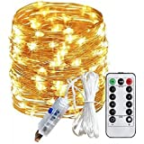 Smart Home and Garden Premium Fairy 100 Led Copper String USB Light with 8 Functions Remote for Diwali Christmas, 10M(Warm White)
