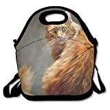 Insulated Lunch Bag, Bento Lunch Bag, Freezable Big Lunch Bag For Women, Cute Cat Kitten