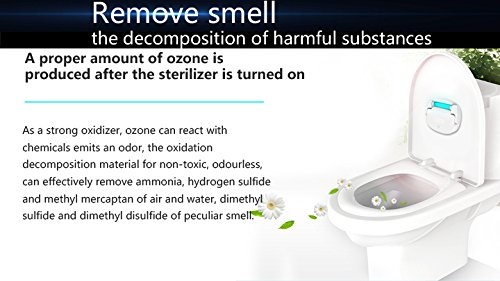 Express Panda Professional Toiletten-Sterilisator mit UV-Licht und Ozon-Technologie für 100% Sterilisation - preisgekröntes Design, perfekt für Business, Universität, Heimgebrauch