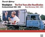 Wendejahre: Ostdeutschland 1990 ? 1995 - Daniel Biskup
