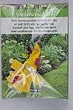 JoJo, Wichtel Arts, J023-070, Glückswichtel, Gartenwichtel, Filz, gelb, 8cm