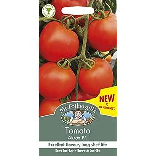 Mr Fothergill's UK/FO/VE Tomato Akron F1