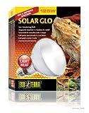 Exoterra Ampoule et Solar Glo pour Reptiles et Amphibiens 125 W