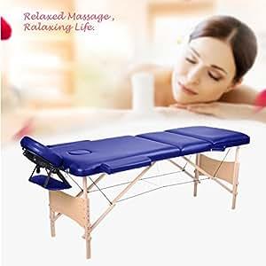 Wellhome tragbar Massageliege Massagetisch Massage table faltbar klappbar holz bett 3 Zonen höhenverstellbar Therapie Tatoo Salon Verstellbare Kopfstützen + Handlauf + 600D Tasche (Blau)