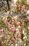Soy un Temerario Mi Amor (1) (Spanish Edition)