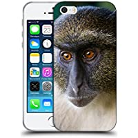 Super Galaxy Soft Flexible TPU Slim Fit Cover Case // V00003899 sykes monkey mount kenya // Apple iPhone 5 5S 5G SE