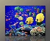 Wandbild auf Leinwand günstig & modern (Coral_Fish-60x80cm) Korallen Fisch Deko Bilder fertig gerahmt mit Keilrahmen riesig. Ausführung Kunstdruck auf echter Leinwand als Wandbild mit Rahmen. Preiswerter als Ölbild Gemälde Poster Plakat mit Bilderrahmen. Made in Germany