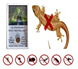 #4: Maruti Store Lizard Repellent (Ultrasonic Pest Repellent) with Led Night Lamp