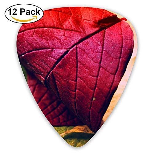 Red Maple Leaf Classic Guitar Pick (12 Pack) for Electric Guita Bass -