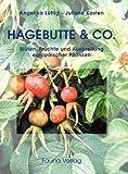 Hagebutte & Co.: Blüten, Früchte und Ausbreitung europäischer Pflanzen