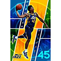 NBA Team Logo Poster