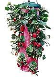 Carreguard Bolsas de Cultivo Colgar las Bolsa Para plantar flores de bolsa para Fresas, Tomate, flores (rojo)