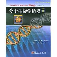 分子生物学精要(影印版)