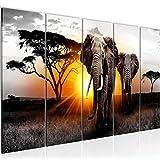 Bilder Afrika Elefant Wandbild 150 x 60 cm Vlies - Leinwand Bild XXL Format Wandbilder Wohnzimmer Wohnung Deko Kunstdrucke Orang 5 Teilig - MADE IN GERMANY - Fertig zum Aufhängen 007656a
