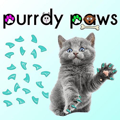 40er Soft Nail Kappen für Katzen Krallen türkis * purrdy Pfoten (5 Kostüme Besten Minuten)