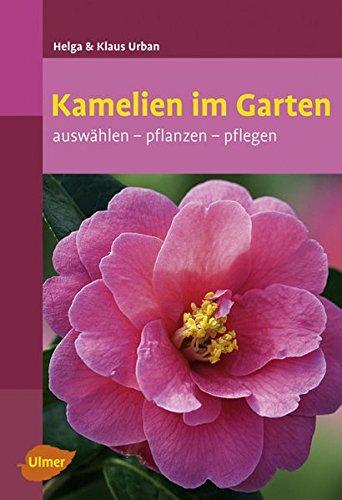 kamelien-im-garten-auswahlen-pflanzen-pflegen