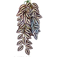 Terrarium Kunst Hänge Pflanze Terrarien künstliche Pflanzen Tradescantia zebrina 70 cm