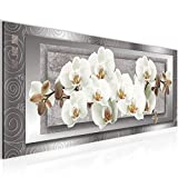 Bilder Blumen Orchidee Wandbild 100 x 40 cm Vlies - Leinwand Bild XXL Format Wandbilder Wohnzimmer Wohnung Deko Kunstdrucke Weiß 1 Teilig -100% MADE IN GERMANY - Fertig zum Aufhängen 205412b