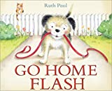 Go Home Flash by Ruth Paul (2015-10-20)