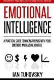 Emotional Intelligence: A Practical Guide to Making Friends with Your Emotions and Raising Your EQ: Volume 8 (Positive Psychology Coaching Series)